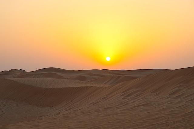 Arabian Adventures Night Safari