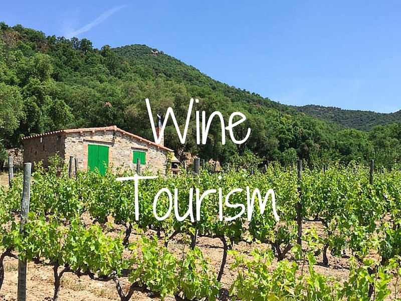wine tourism Regional tour guides a must-see for discerning travellers who seek fine wine and unique travel experiences read more.