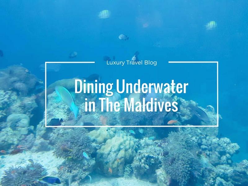 5.8 Underwater Restaurant – Dining Underwater
