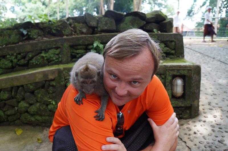 animaux à Bali