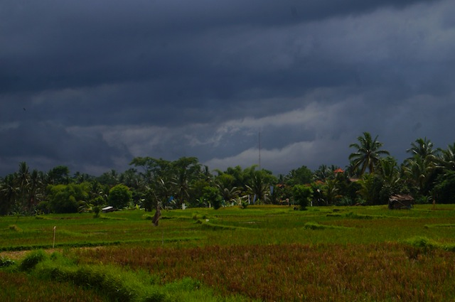 Rainy Season in Bali