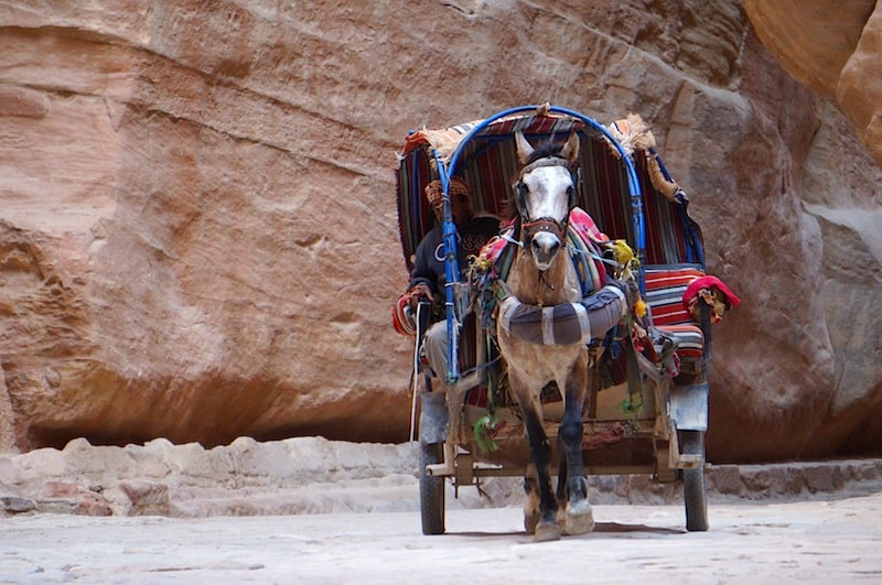 How To Get From Amman To Petra