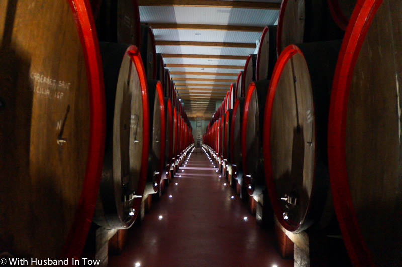Learning about 200 years of wine history at Gavioli Wine Museum in Modena, Emilia Romagna