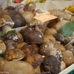 Fall Mushrooms at the Modena Market