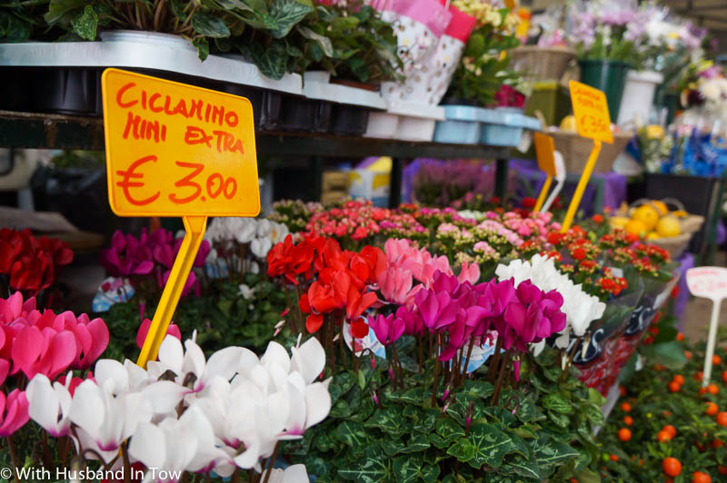 Fresh flowers at the Modena market