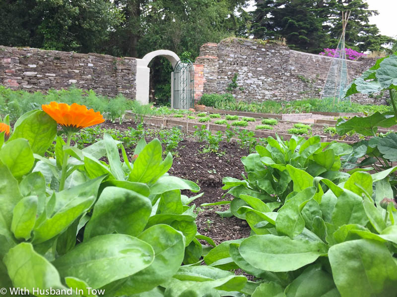 Traditional Walled Garden
