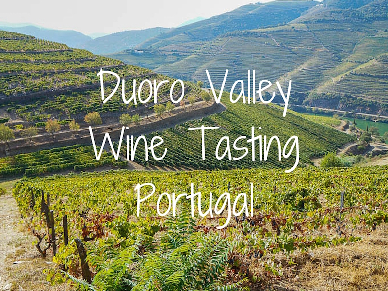 Portugal Wine Tours Douro Valley