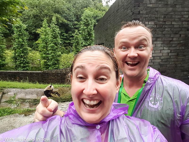 Chengdu Panda Volunteer Experience