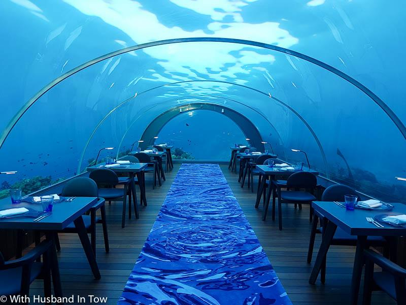 luxury travelers dining underwater