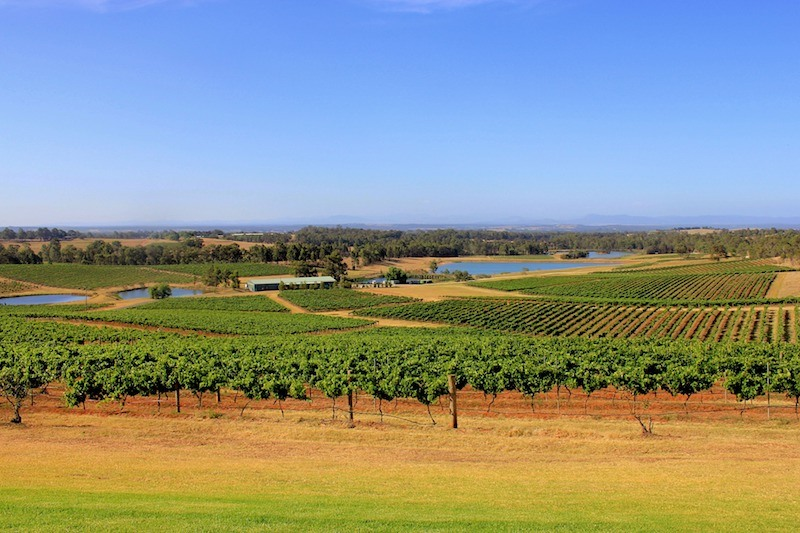 Hunter Valley Wineries Australia wine regions