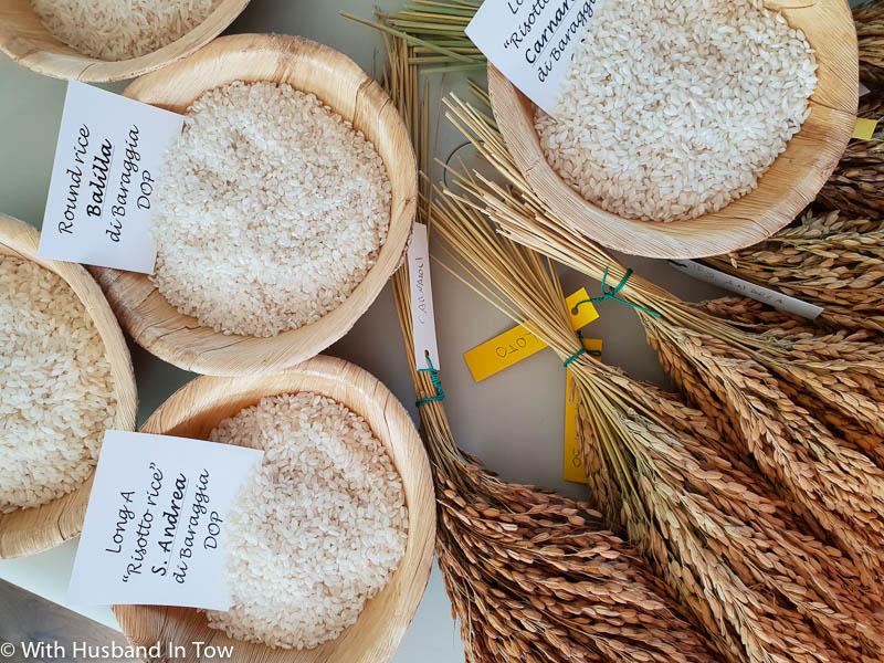 Piemontese Rice