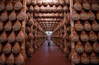 Day Trips From Bologna - Small Group Bologna Food Tour