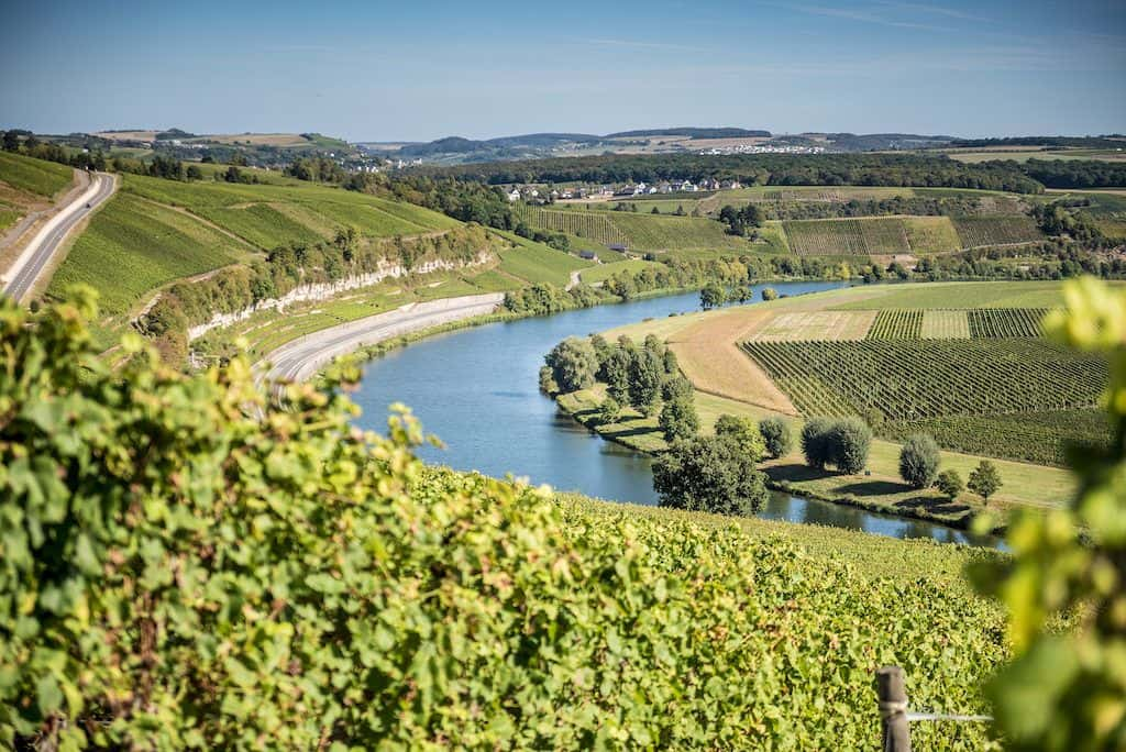 Luxembourg Wine Guide - How To Explore The Moselle Wine Region