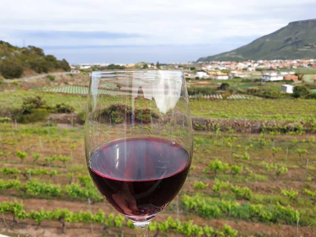 wine tour in Tenerife