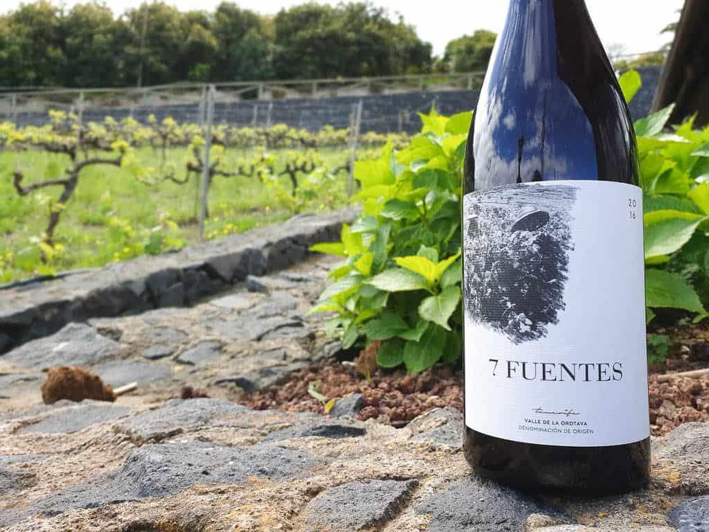 best Tenerife grape varietals